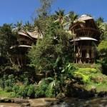 1-Green Village satul verde din Bali Indonesia Ibuku