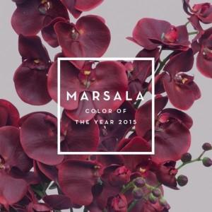 1-Marsala culoarea anului 2015