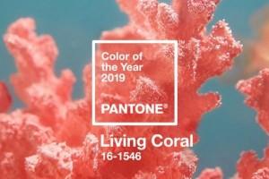 1-Pantone Living coral 16-1546 culoarea anului 2019 Pantone