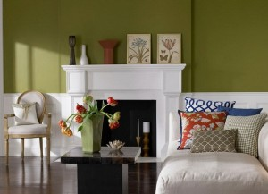 1-asortare perete olive cu mobila si accesorii albe living