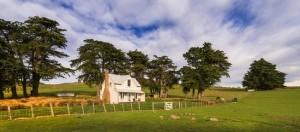 1-cabana din lemn de 92 mp ferma Annandale Noua Zeelanda