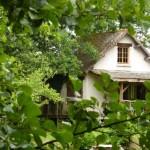 O splendida cabana asezata pe malul unui lac ascuns printre copaci