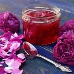 Trandafirul de dulceata (Rosa rugosa)