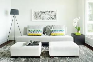 1-exemplu de punere in valoare a canapelei din living