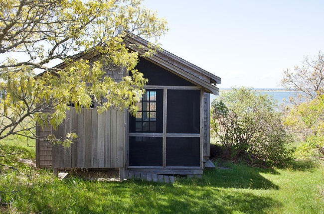 1-exterior casuta din lemn pentru musafiri