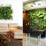 Gradini verticale de interior – plantele verzi in amenajarile moderne