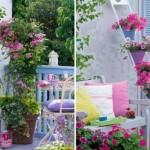 Cum sa-ti decorezi balconul sau terasa cu flori de sezon