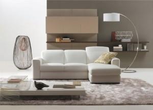 1-living modern cu canapea biblioteca lampadar covor si masuta de cafea