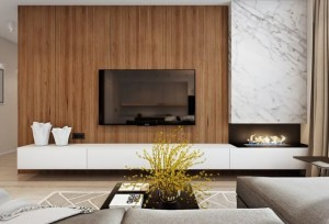 1-living modern cu semineu si televizor pe acelasi perete