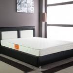 1-pat cu lada de depozitare model Eros magazin Dedeman