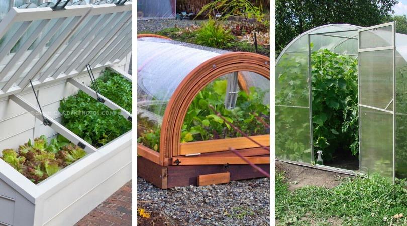 rasadnite solarii gradina legume