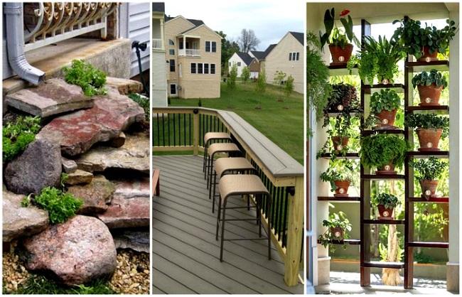 1-solutii si idei decorativede toamna pentru curte si gradina