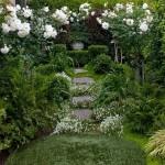 1-tradafiri si gypsophila albe decor gradina cu aer romantic