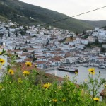1-vedere spre portul insulei Hydra printre flori de primavara