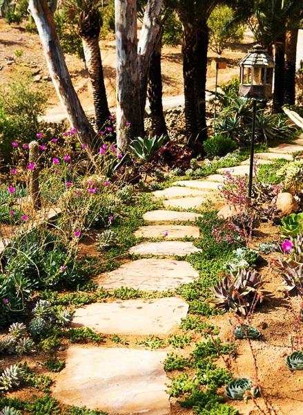 10-alee de gradina frumoasa din dale de piatra marginite de flori mov