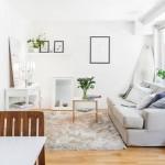 10-canapea living open space casa fara etaj amprenta 54 mp