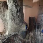 10-copacul metalic in timp ce era imbracat treptat in beton