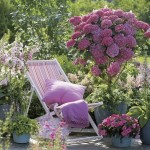 10-flori in diverse nuante pastelate decor gradina romantica