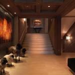 10-hol interior cabana lemn lux alpi francezi