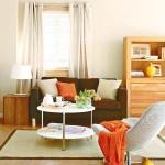 10-living cu accente decorative maro si portocalii