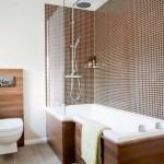 10-mozaic ciocolatiu decor baie pe peretele din dreptul cazii