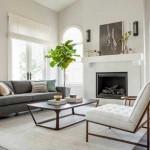 10-smochin decorativ planta decorativa amenajare living modern