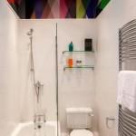 10-tavan colorat in decorul unei bai moderne finisate in alb