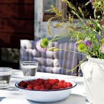 10-zmeura si flori de camp pe masa din curtea casei din padure