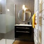 11-baie finisata cu mozaic lambriu si dusumea casa mica lemn