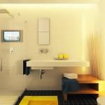 11-baie moderna minimalista faianta alba gresie neagra