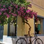 11-bicicleta la umbra unei bougainvillea pe o straduta din Nafplio