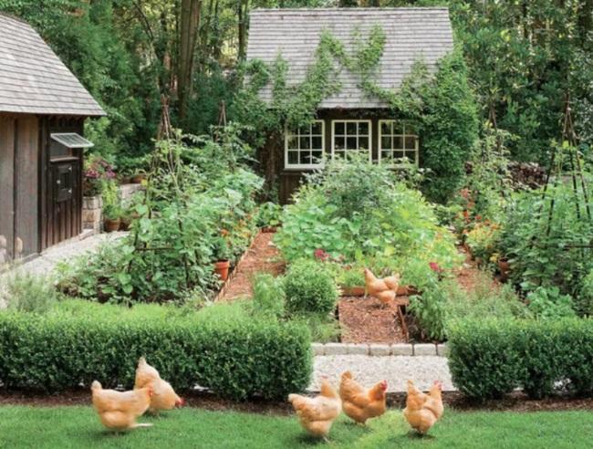 11-gradina rustica de legume in straturi inaltate