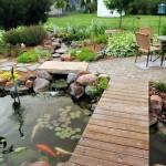 11-idei de amenajare iaz ornamental de gradina