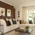 11-perete de accent ciocolatiu decor living mic modern