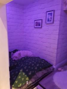 12-Molly dormind in patul ei din camera amenajata sub scara interioara