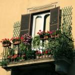 12-jardiniere si ghivece cu flori decor balcon mic