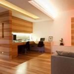 12-living modern open space pereti placati cu panouri din lemn