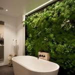13-baie moderna cu lemn placi ceramice si plante verzi
