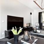 13-mobilier minimalist negru si televizor living modern