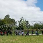 13-montare solar curtea casei din lemn de 50 mp ferma wild goose