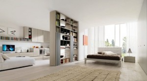 13-separare dormitor de living prin intermediul unei biblioteci