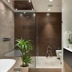 14-cabina de dus din sticla interior baie moderna minimalista