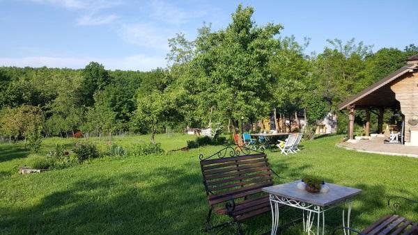 curte verde padure casa vacanta langa Pitesti