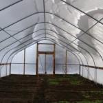 14-interior solar cultivare legume ferma wild goose