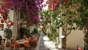 15-o taverna greceasca la umbra unei bougainvillea mari