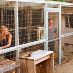 16-Patrick si Jillian Dempsey ingrijind animalele pe care le au