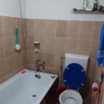 16-baie cu cada casa din lemn la tara Vlad