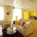16-open space mic cu living si bucatarie culoare galbena