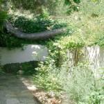 16-tulpina pin de la baza constructiei casei din copac