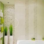 18-baie moderna cu cada pe colt decorata in verde maro alb si gri